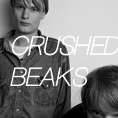 CRUSHEDBEAKS